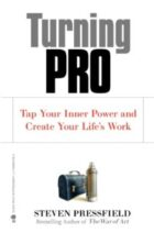 turning pro by steven pressfield book summary